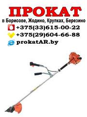 Прокат и аренда бензинового триммера в Борисове,  Жодино,  Крупках,  Бере