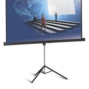 Аренда проектора и экрана прокат проектора проектор в аренду экран