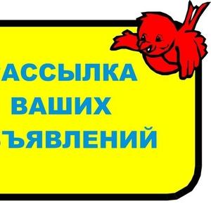 Размещаем Частные и Коммерческие объявления Борисов